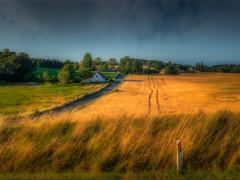 Zealand landscape (ibjfoto) Tags: afternoon danmark denmark ibjensen ibjfoto natur sjælland zealand eftermiddag landscape landskab