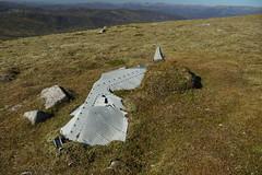 Absorbing (steve_whitmarsh) Tags: aberdeenshire scotland scottishhighlands highlands cairngorms wing tsagairtmor mountain hills landscape nature topic