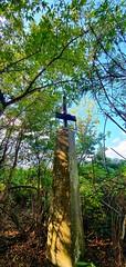 #balazsk988 #beautiful #nature  #s10 #mako #hungary #cycling #goodday (Balazsk988) Tags: beautiful s10 nature balazsk988 goodday cycling mako hungary