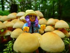 Between the mushrooms (sander_sloots) Tags: lego hiddenside mushrooms paddenstoelen toadstools forest panasonic dctz90 parker lumix bos moss mos hoek van holland rotterdam afol toy photography autumn fall herfst minifig minifiguur