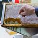 Ein Besucher probiert eine Bienenwabe: die ursprünglichste Form des Honigverzehrs