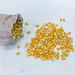 Popcornmais in einem Leinensack und auf einem Holztisch