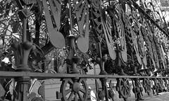 Detall de ferro forjat al carrer de Mallorca 278, Barcelona. (heraldeixample) Tags: heraldeixample bcn barcelona spain espanya españa spanien catalunya catalonia cataluña catalogne catalogna arquitectura architecture architekture pensaernïaeth 架构 arkitektur architettura สถาปัตยกรรม arkitettura ngc r