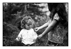 (bakmak71) Tags: minoltax300 swfilm analog agfaapx100 scanvomnegativ adonal summer blackforest schwarzwald heidelbeeren