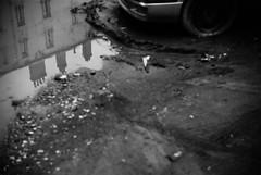 série noire, suite (chetbak59) Tags: argentique washi noiretblanc