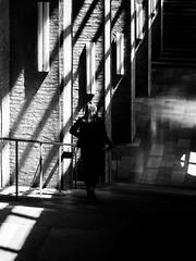 (empunkthapunkt) Tags: people woman oneperson stairs streetlife streetphotography blackandwhite bw bwstreet lines shadows light dark noir mood atmosphere monochrome menschen frau einzelgänger strasenfotografie schwarzweiss schwarz weis einfarbig linien stufen treppe schatten licht dunkel stimmung atmosphäre münchen munich altepinakothek bavaria