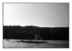 (bakmak71) Tags: minoltax300 swfilm analog agfaapx100 scanvomnegativ adonal summer blackforest titisee schwarzwald
