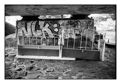 (bakmak71) Tags: minoltax300 swfilm analog agfaapx100 scanvomnegativ adonal summer freiburg dreisam sommeranderdreisam