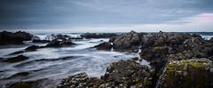 Tide and rocks (designfabric57) Tags: rocks tide sea long exposure sky bamburgh castle beach waves panasonic lumix g7 northumberland coast