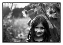 (bakmak71) Tags: minoltax300 swfilm analog sommer sonnenblume agfaapx100 scanvomnegativ adonal meinsonnenschein