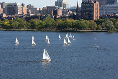 Sailboats on the Charles River (ccb621) Tags: boston cambridge charlesriver massachusetts boats buildings city river sailboat sailing skyline water