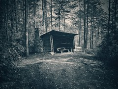 Cabin in the woods (M Malinov) Tags: beautiful monochrome mono architecture bw bulgaria building cabin woods nature outside fantastic българия гора природа моно