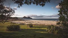 Pauanui (michaels.jeff) Tags: pauanui coramandel coastal eastcoast nz newzealand nzphotography nzlandscape ocean photographynz picoftheday sony sonynz sonyalfa s