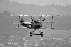 SE-XXZ (toptag) Tags: fokkerdr1 fokker dr1 sexxz loxz zeltweg airpower airshow vintage styria steiermark austria sw