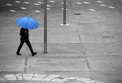 Perfectionnement bleuté... (Tonton Gilles) Tags: mise en scène noir et blanc partiel personnage silhouette parapluie bleu parc de la providence alençon normandie graphisme lignes courbe poteaux rectangles carrés pavés
