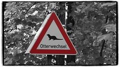 Otterwechsel (1elf12) Tags: otterzentrum hankensbüttel germany deutschland heide schild sign otterwechsel
