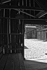 Weathered China Camp Village (sswj) Tags: chinacampvillage weathered oldwoodbuildings monochrome composition sanrafael sanpablobay marincounty northerncalifornia availablelight existinglight bw blackandwhite leica dlux4 dl4 scottjohnson abstractreality