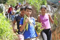 _O2A0140 (JauaMiranda) Tags: cosecha maíz caracas venezuela chávez siembra