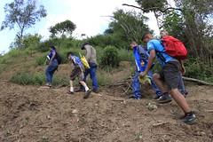 _O2A0089 (JauaMiranda) Tags: cosecha maíz caracas venezuela chávez siembra
