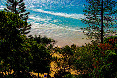 take me there, oceanside. (Ardan_Dojan) Tags: headland walk ocean beach trees flowers cliff waves reflections seaside coastal coast pines calm refreshing relaxing photoart landscape beauty seascape landscapephotography travel trip australia vista nature naturephotography hankssomuchdonna bestwishesfortheweekend
