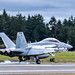 Growler As Grey as the Overcast Smoking the Tires at OLF Coupeville