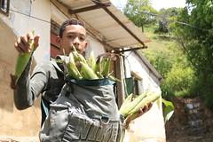 _O2A0131 (JauaMiranda) Tags: cosecha maíz caracas venezuela chávez siembra