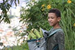 _O2A0104 (JauaMiranda) Tags: cosecha maíz caracas venezuela chávez siembra