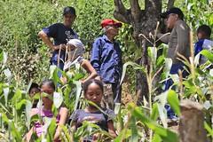 _O2A0060 (JauaMiranda) Tags: cosecha maíz caracas venezuela chávez siembra