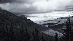 Hurricane Ridge-Olympic National Park_stitch2bw (wNG555) Tags: 2014 washington olympicnationalpark hurricaneridge portangeles sony a6000 bw fav50 fav100