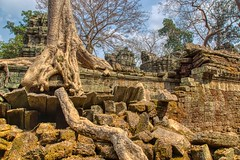 Ruins of Ta Prohm a.k.a. Jungle Temple near Siem Reap, Cambodia (UweBKK (α 77 on )) Tags: taprohm ta prohm jungle temple ruins ancient history historic historical culture heritage angkor archaeological park stone tree strangler fig siemreap siem reap cambodia southeast asia sony alpha 77 slt dslr