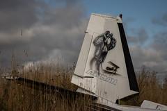IMGP0512 (ferm93) Tags: abandoned öde övergivet moody flygplan