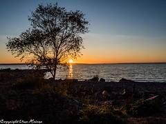 Sonnenuntergang auf Tjurkö 092019 07 (U. Heinze) Tags: schweden sverige sweden sonnenuntergang himmel sky herbst wasser ostsee sonne sun olympus omd em1markii 12100mm tjurkö