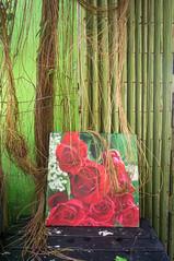 (kuuan) Tags: voigtländerheliarf4515mm manualfocus mf voigtländer15mm aspherical f4515mm superwideheliar apsc sonynex5n saigon hcmc vietnam roses cafecasita caphecasita detail