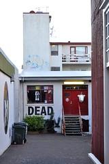 Dead (AntyDiluvian) Tags: dead iceland laugavegur reykjavik gallery