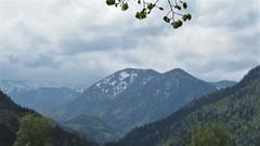 View of the Alps from Mariazell, Austria (Paul McClure DC) Tags: mariazell mariazellerland austria österreich styria steiermark may2019 mountains alps scenery obersteiermark