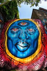 Visage bleu (Paul Leb) Tags: artderue porte montréal québec canada visage bleu oeil