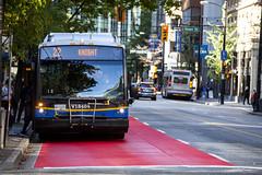 TransLink Bus Red Carpet @ Granville St x W Pender St (GoToVan) Tags: translink bus redcarpet transportation granvillestreet penderstreet paint busstop