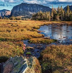 High Meadow - Hidden Lake Trail, Glacier National Park (j-rye) Tags: fall glaciernationalpark hiddenlakeoverlook landscape clouds meadow mountains nature sky trees water sonyalpha sonya7rm2 ilce7rm2 mirrorless