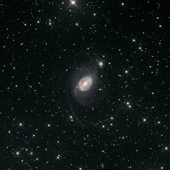 NGC1512 / NGC1510 (Seabird NZ) Tags: newzealand canterbury christchurch chile ovalle riohurtado chilescope telescope2 t2 newtonian fli proline 16803 pixinsight dxophotolab2 galaxies ring doradogroup horologium lrgb ngc1512 ngc1510 starstreams stars interacting deepsky astrophoto astrophotography bin1x1 ccd backgroundgalaxies astrometrydotnet:id=nova3664566 astrometrydotnet:status=solved
