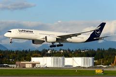 CYVR - Lufthansa A350-900 D-AIXK (CKwok Photography) Tags: yvr cyvr lufthansa a350 daixk