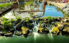 #Green - 7511 (✵ΨᗩSᗰIᘉᗴ HᗴᘉS✵84 000 000 THXS) Tags: iphone11promax iphone green water waterfall pairidaiza belgium europa aaa namuroise look photo friends be yasminehens interest eu fr party greatphotographers lanamuroise flickering