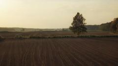 *** (pszcz9) Tags: polska poland przyroda nature natura naturaleza zachódsłońca sunset drzewo tree pole field pejzaż landscape jesień autumn beautifulearth sony a77