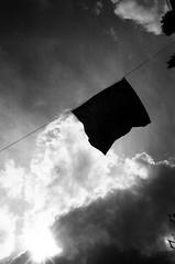 Black Flag (Ricoh GR1) (stefankamert) Tags: light film clouds analog noir noiretblanc flag grain ricoh blackflag street sky blackandwhite bw music blackwhite gr analogue gr1 ricohgr1 stefankamert 0919