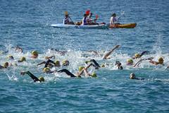 Traversée de la baie (hans pohl) Tags: portugal sesimbra setubal atlantique océan eau water personnes people sports kajaks