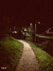 Un percorso sempre illuminato. (iw2ijz) Tags: nightlight apple iphonex iphone light illuminazione notte paese trip vacanze trentinoaltoadige bolzano versciacodisopra
