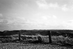 Sylt (ericgrhs) Tags: sylt dünen nordsee sanddunes insel island northsea schleswigholstein nordfriesland bw film analog
