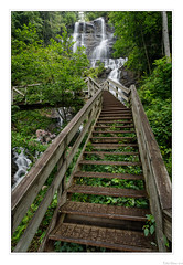 Upper Staircase at Amicalola (John Cothron) Tags: americansouth amicalolafalls amicalolafallsstatepark cpl canoneos5dmkiv chattahoocheeoconeenationalforest cothronphotography dawsonville distagon2128ze distagont2821ze dixie forsythcounty galandscapephotography georgia georgialandscapephotography georgiaphotographer johncothron southatlanticstates southernregion thesouth us usa usaphotography unitedstatesofamerica zeissdistagont2821ze circularpolarizingfilter clouds cloudy cloudyweather diffuse environment falling flowing forest highestwaterfallingeorgia landscape longexposure morninglight nature outdoor outside overcast protected scenic stairs summer tumblingwaters water waterfall 270675d4190826coweb1062019 ©johncothron2019 upperstaircaseatamicalola