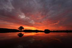 IMG_8927 (geraldtourniaire) Tags: eos6d ef landschaft licht l natur nature sonnenaufgang 1740l 6d mittelfranken franken