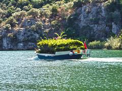 Garden boat on the Dalyan River (sixthland) Tags: blipfoto boat dalyan garden river rx100m2 turkey flare