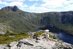 Blick zurück zum Cradle Mountain (Alfesto) Tags: tasmanien tasmania australien australia au trekking wanderung cradlemountain hansonspeak dovelake